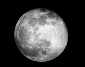 Don´t Forget Me