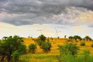 Old Books; Wind Blowing; Wet Season